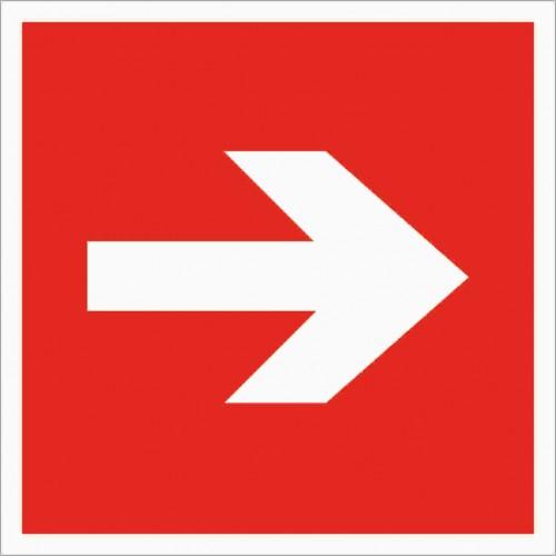 Знак Фотолюминесцентный F01-01, ГОСТ