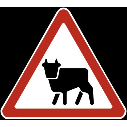 Дорожный знак 1.26 - Перегон скота